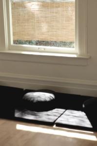 zazen janela